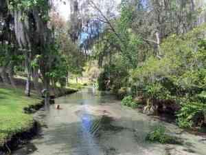 Waders in the spring run at Wekiva Falls RV Resort