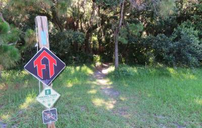Top hiking trails near Orlando: Little Big Econ State Forest
