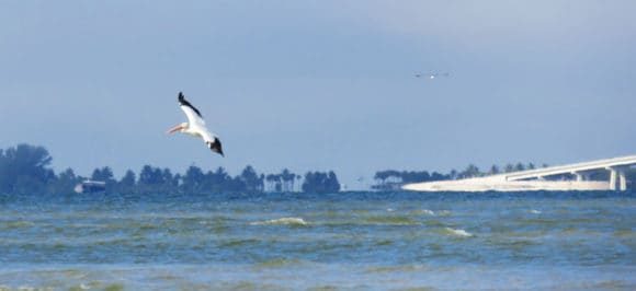 San Carlos Bay - Bunche Beach Preserve in Fort Myers