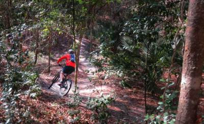 Mountain biking trail at Alafia River State Park. (Photo: Bonnie Gross)