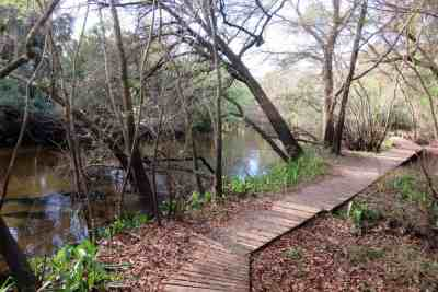 Little Manatee State Park has a beautiful trail that gives you views of the river on either a 3-mile loop, or a 6.5 mile hike if you add another loop. (Photo: Bonnie Gross)