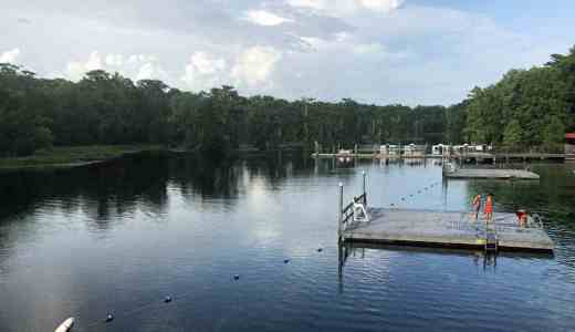 The view from the diving platform at Wakulla Springs. (Photo: Bonnie Gross)