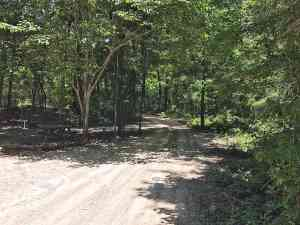 Access road in the Dogwood Campground, O'Leno State Park, High Springs.