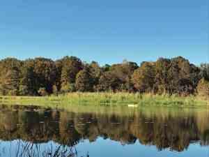 kayaking on lake seminole