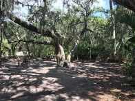 Live Oak campsite
