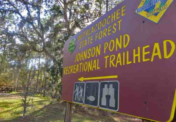 Hiking trails offer lots of natural beauty in the Dunnellon area. (Photo: Bonnie Gross)