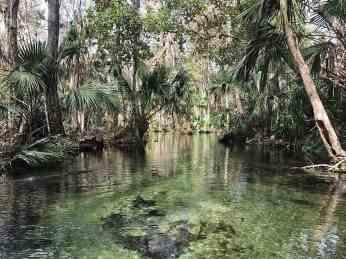 emerald cut rock springs run