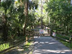Boardwalk at Alderman's Ford Park.