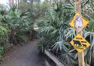 Trail at Busch Wildlife Sanctuary in Jupiter. (Photo: David Blasco)