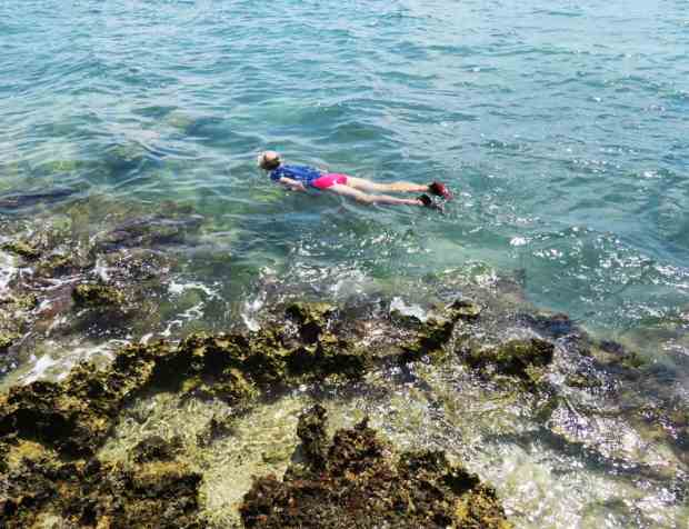 Snorkeling at Indian Key State Park is excellent. (Photo: David Blasco)