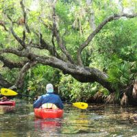Readers' top guides for outdoor things to do in Florida — Florida Rambler