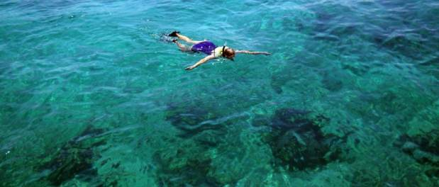 Snorkeling on boat tour in Biscayne National Park.