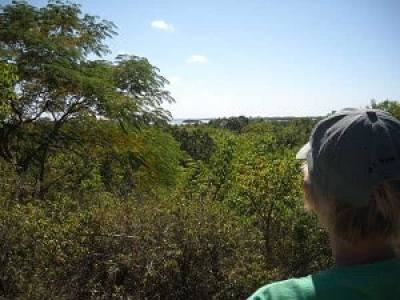 Mound Key Archaeological State Park: The view