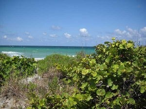 Florida beaches: John U. Lloyd State Park, Dania Beach, Florida