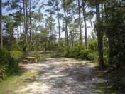 Campsite at Big Lagoon State Park
