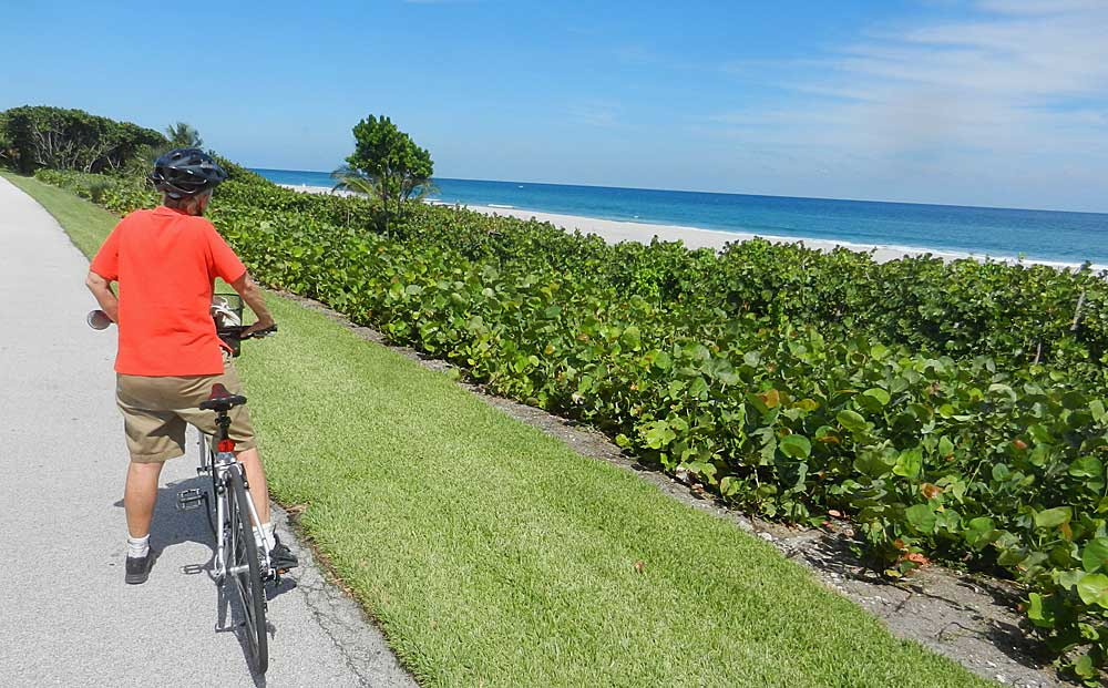 Miami Beach Bike Path