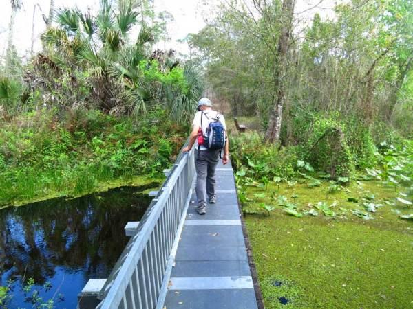 Bridge over Patrick Creek in Tiger Creek Preserve