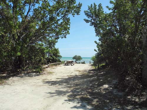 Long key beach camping in the florida keys florida rambler typical campsite at long key state park sciox Choice Image