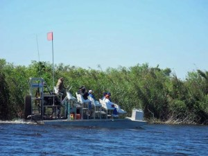 Airboat rides at the Loxahatchee National Wildlife Refuge