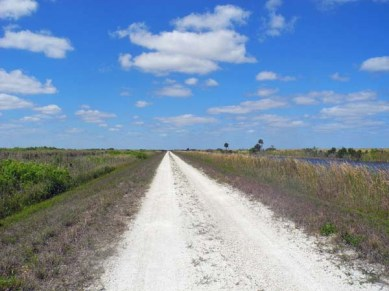 The long road west on the berm at the Loxahatchee National Wildlife Refuge