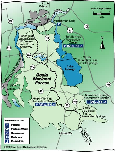 Map Of Springs In Florida.5 Things To Do In Ocala National Forest Florida Rambler