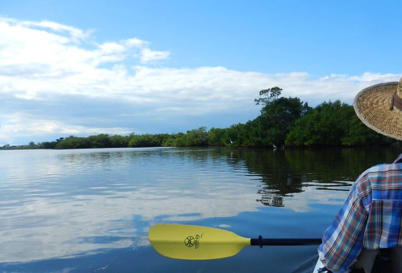 Our favorite kayak trails in Florida   Florida Rambler