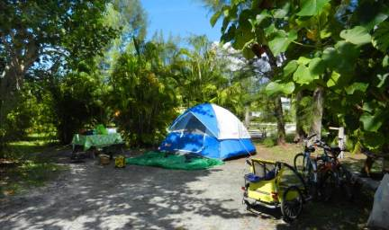 Camping at Periwinkle Trailer Park on Sanibel, Florida.