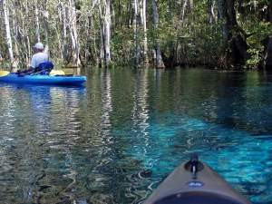 Paddling on the Silver River at Silver Springs State Park