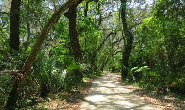 Roads and trails through the Timucuan Preserve pass through an Old Florida landscape.