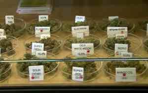 marijuana dispensaries west palm beach