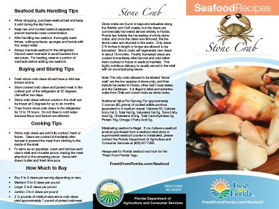 Stone Crab Recipe Brochure