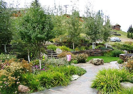 xeriscaping florida friendly yards
