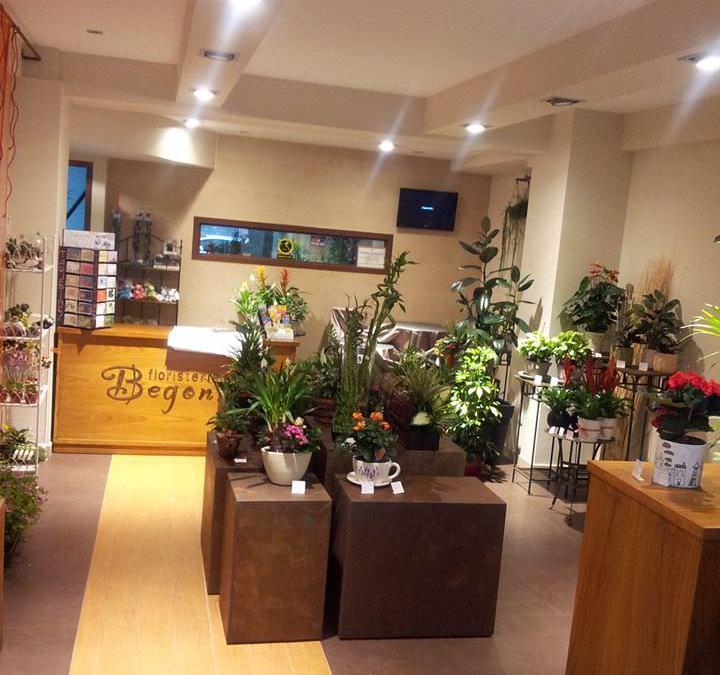 Interior de la floristeria