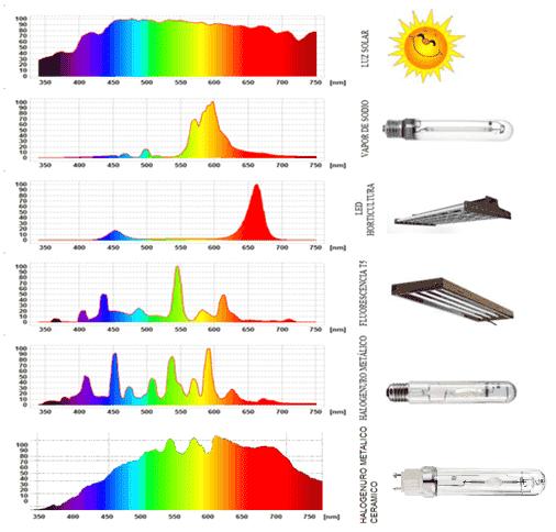 Comparativa Tipos de iluminacin para cultivo interior