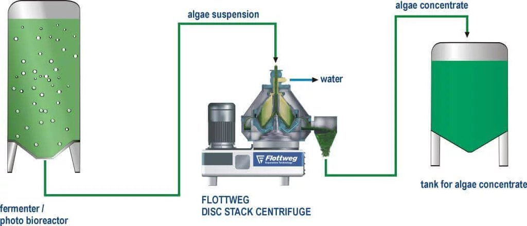 oil water separator diagram 1990 honda civic stereo wiring algae and extraction - flottweg & decanter