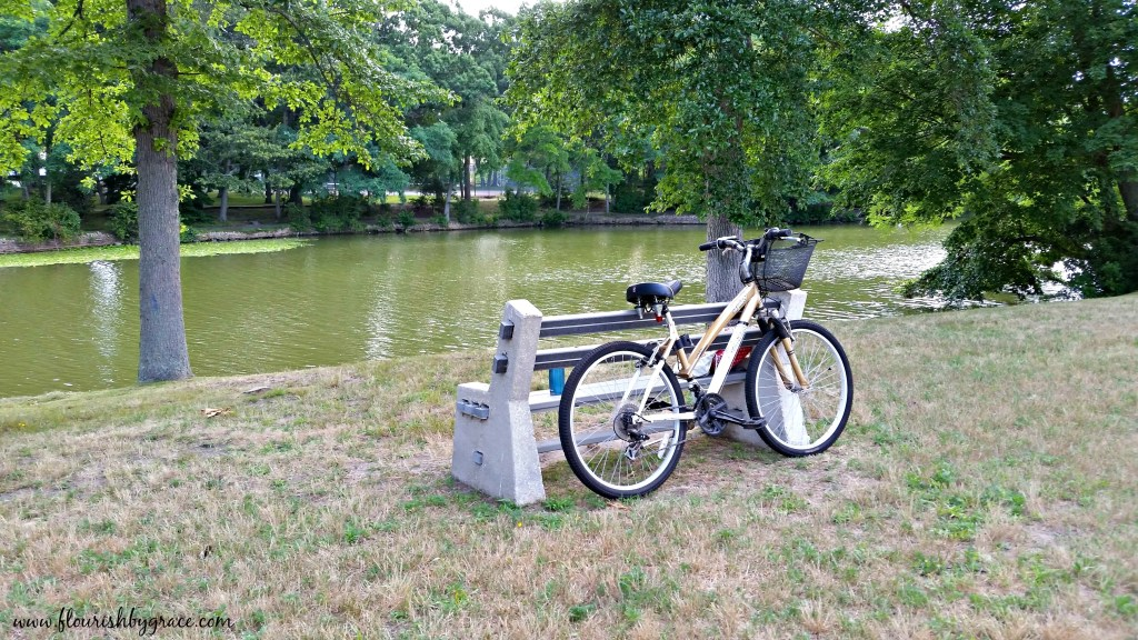 Bike at park with lake, quiet time