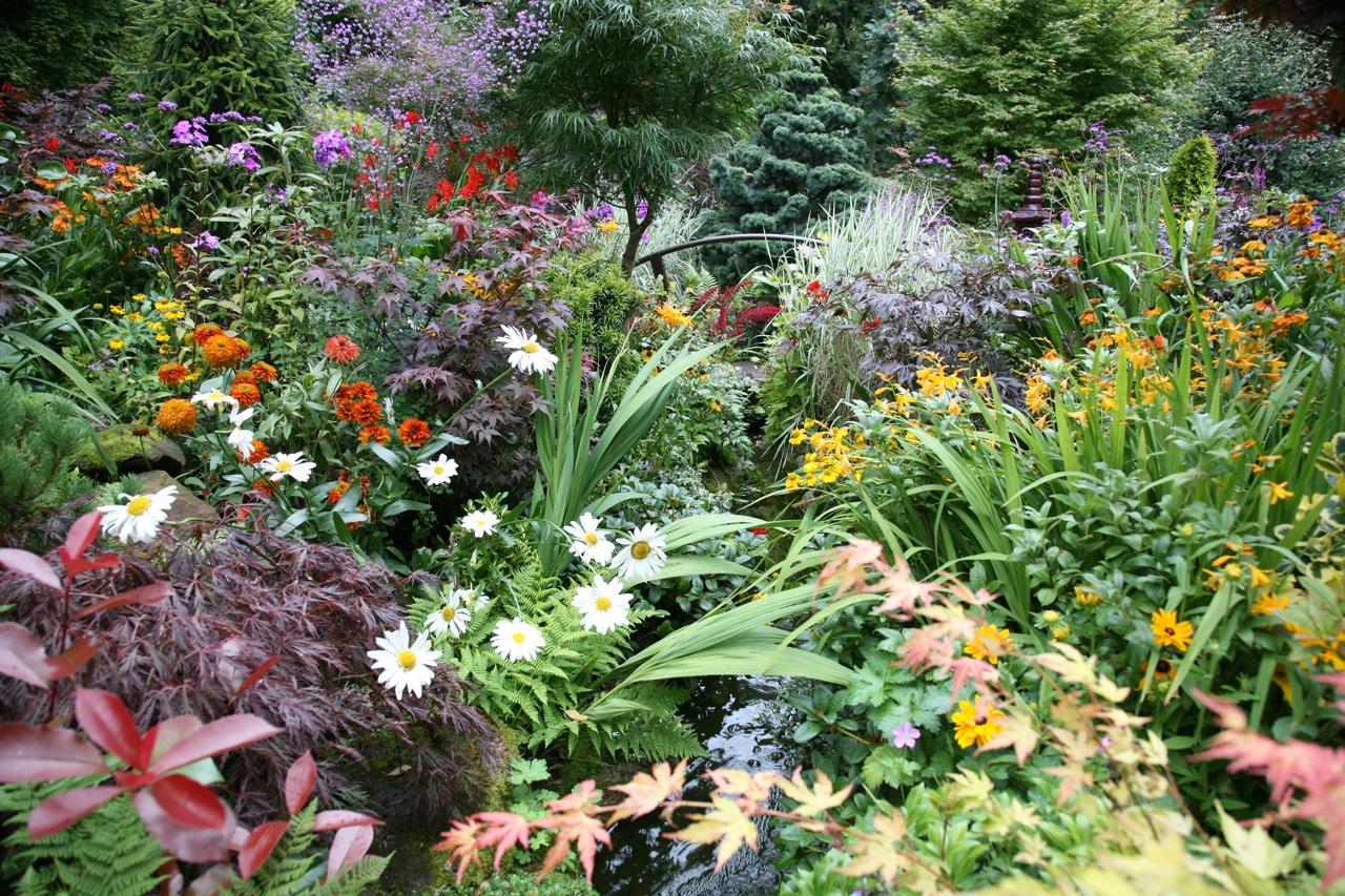 beautiful bulbs & perennials