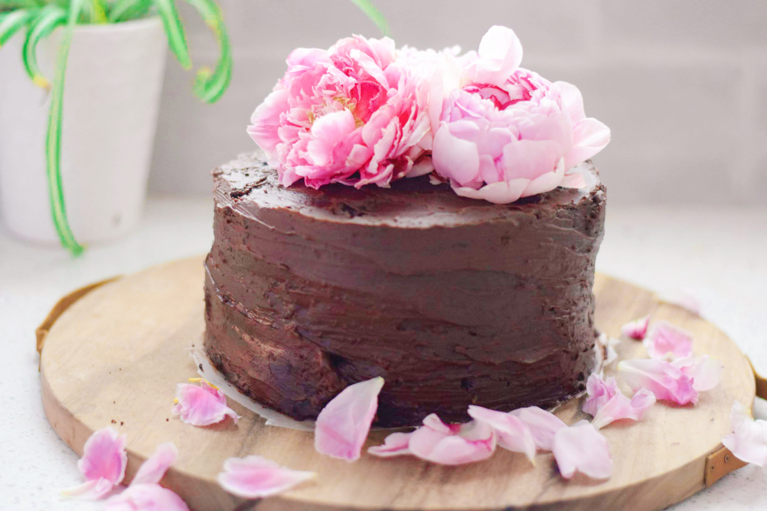 Guinness stout chocolate cake