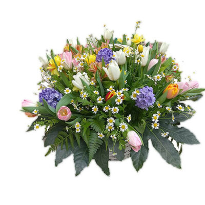 mixed tulips in basket