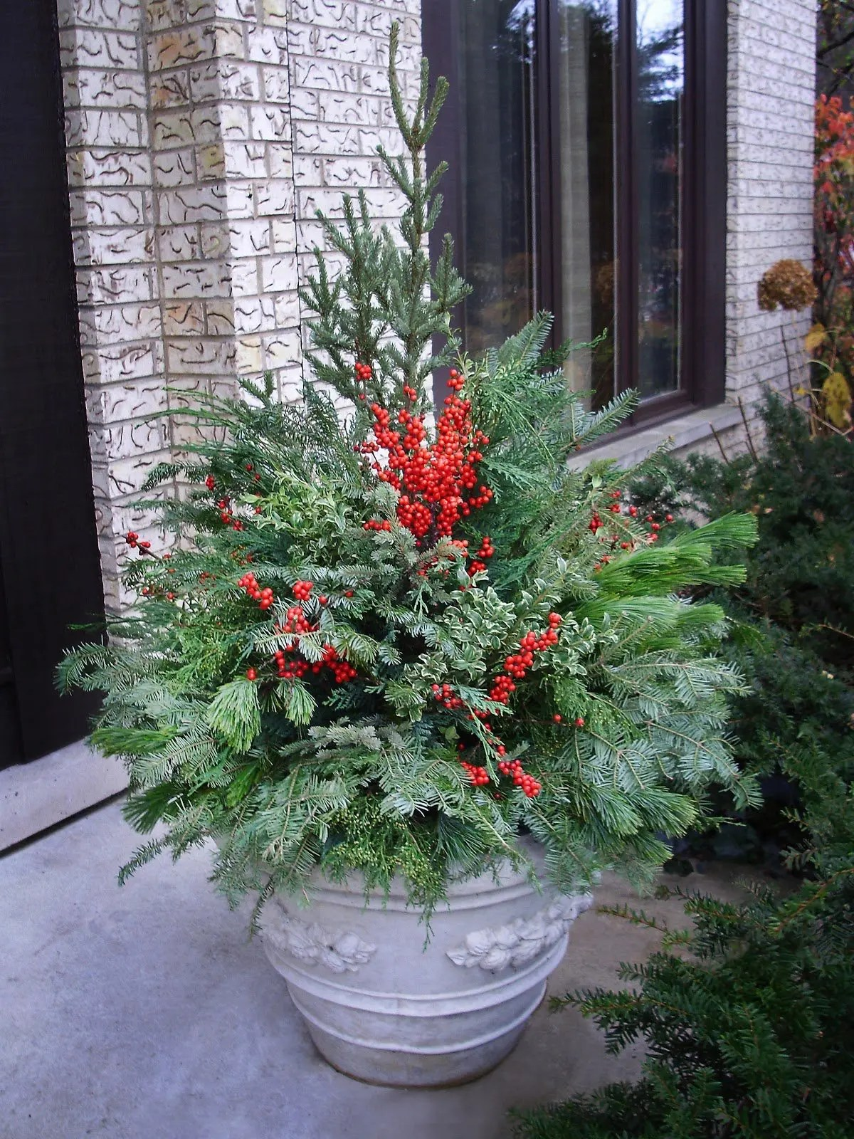 Winter Container Gardens