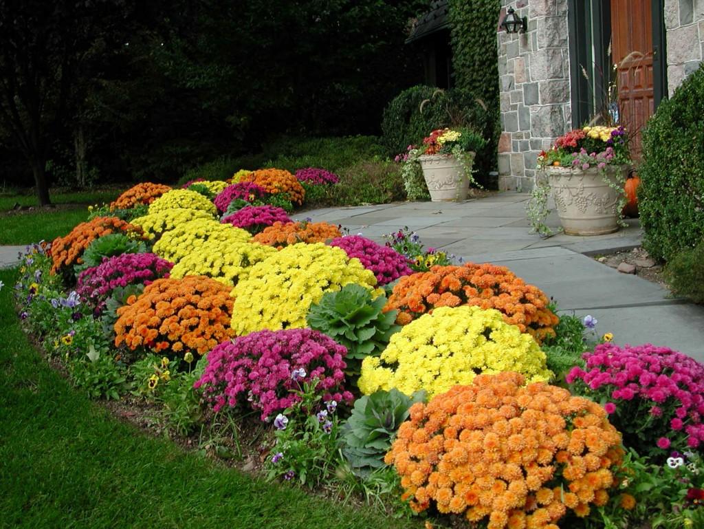 Flower Garden Ideas Flower Garden Pictures