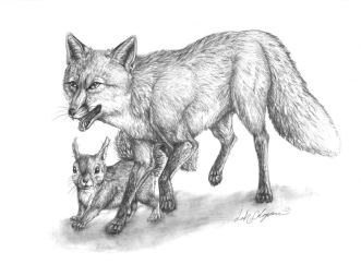 Pencil sketch of Fawna and Flowerlark.