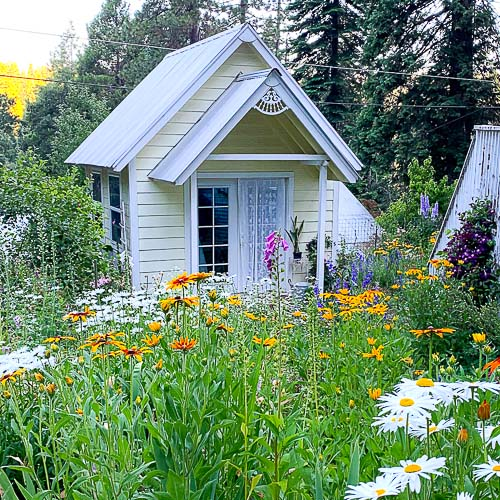 she shed in flower garden