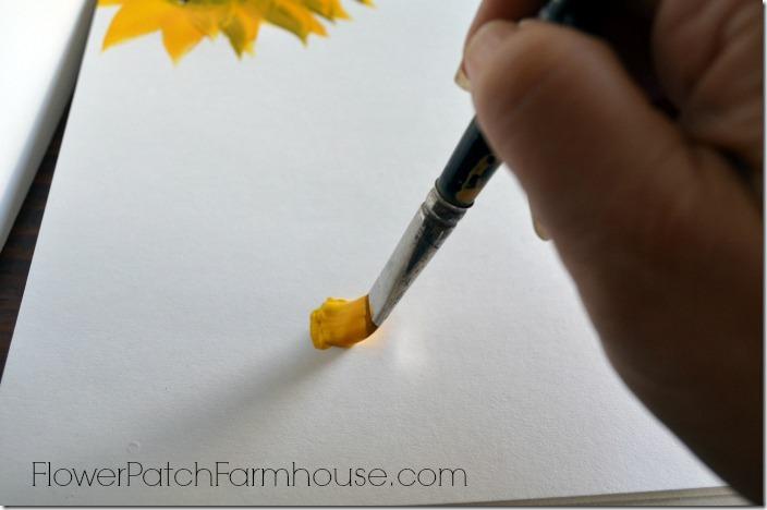 sunflower 91