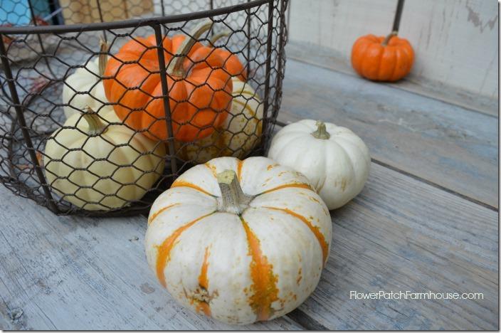 basket of pumpkins700