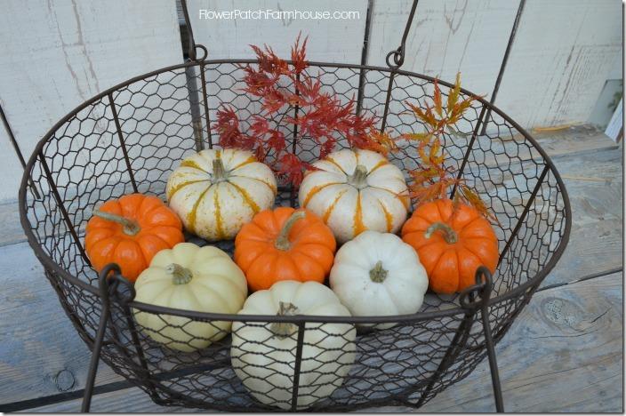 basketfullof pumpkins700