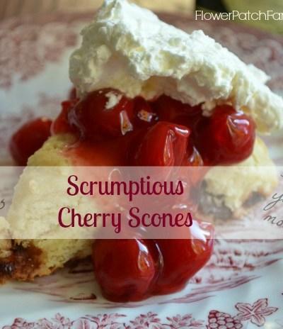 Scrumptious Cherry Scones!