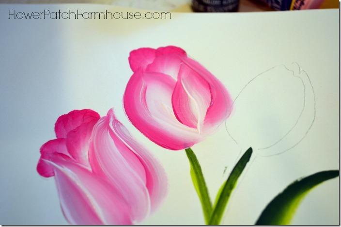 tulip91