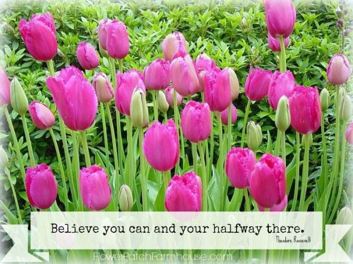 Believe you Can Inspirational quote