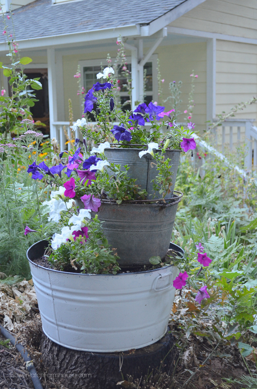 Old Buckets and Petunias www.flowerpatchfarmhouse.com